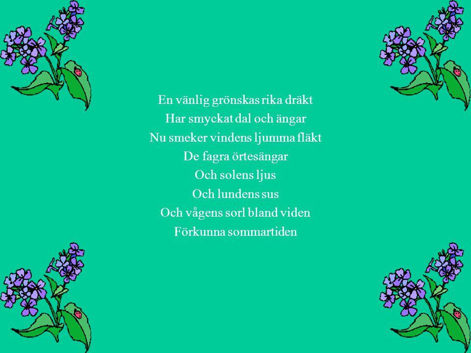 Sin lycka och sin sommarro De yra fåglar prisa Ur skogens snår, ur stilla bo Framklingar deras visa En hymn går opp Med fröjd och hopp Från deras glada kväden Från blommorna och träden