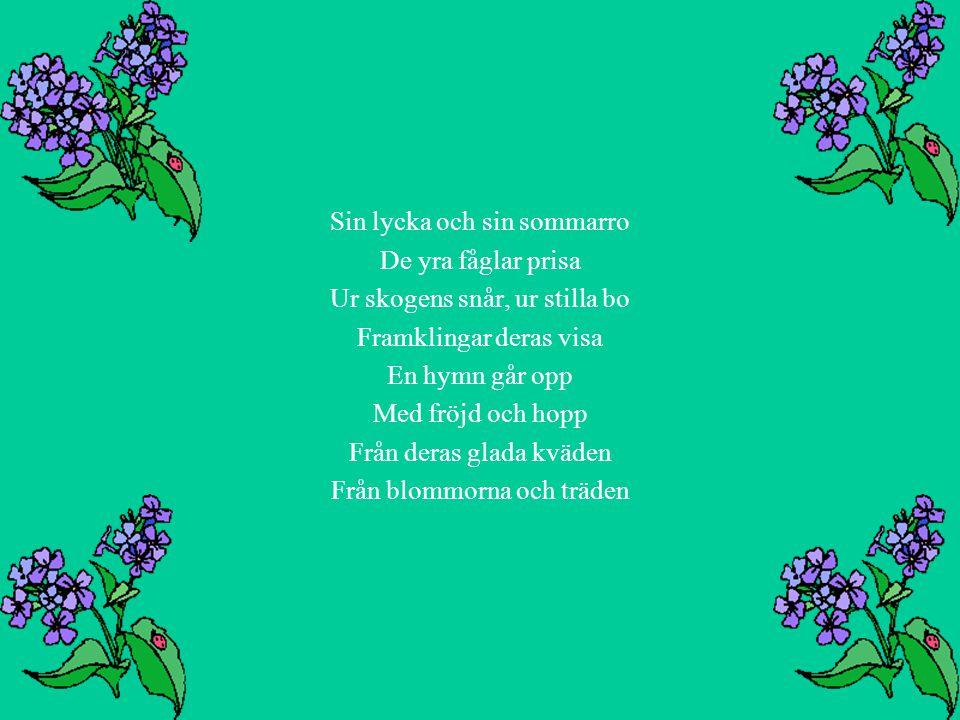 Sin lycka och sin sommarro De yra fåglar prisa Ur skogens snår, ur stilla bo Framklingar deras visa En hymn går opp Med fröjd och hopp Från deras glad