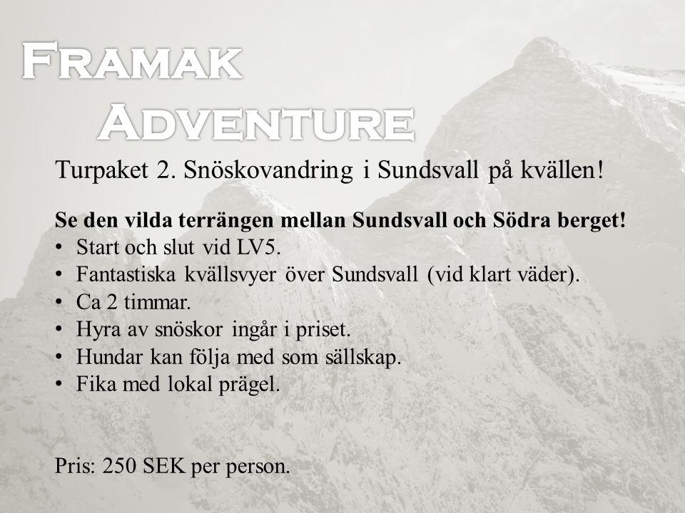 Turpaket 3.Skidtur i Sundsvall med polarhundar.