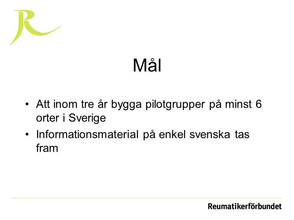 Mål Att inom tre år bygga pilotgrupper på minst 6 orter i Sverige Informationsmaterial på enkel svenska tas fram