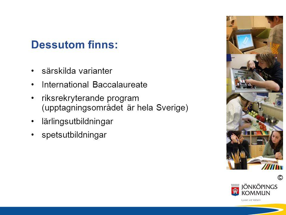 © särskilda varianter International Baccalaureate riksrekryterande program (upptagningsområdet är hela Sverige) lärlingsutbildningar spetsutbildningar
