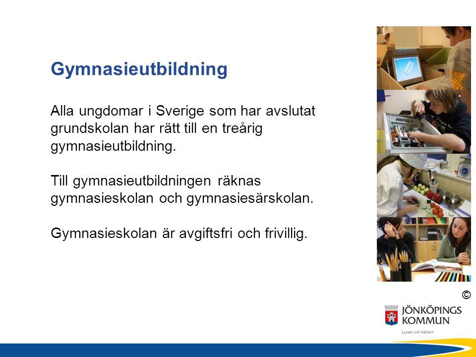 © Högskoleförberedande program Ger grundläggande behörighet till högskolan Förbereder för fortsatta studier Yrkesprogram Kan ge grundläggande behörighet till högskolan Förbereder för ett yrke Innehåller APL (arbetsplatsförlagt lärande) 15 veckor Gymnasieprogrammen 18 nationella program (3-åriga) för alla elever i hela Sverige att välja mellan.