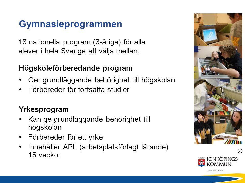 © Högskoleförberedande program Ger grundläggande behörighet till högskolan Förbereder för fortsatta studier Yrkesprogram Kan ge grundläggande behörigh