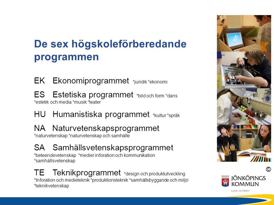 © De sex högskoleförberedande programmen EKEkonomiprogrammet *juridik *ekonomi ES Estetiska programmet *bild och form *dans *estetik och media *musik