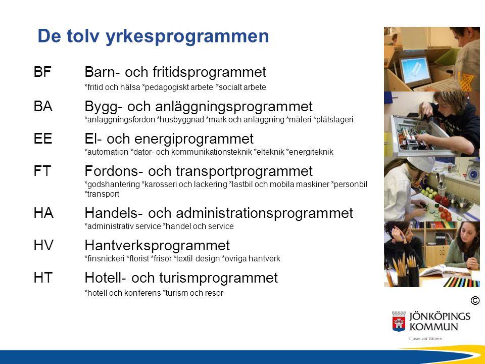 © De tolv yrkesprogrammen BFBarn- och fritidsprogrammet *fritid och hälsa *pedagogiskt arbete *socialt arbete BABygg- och anläggningsprogrammet *anläg