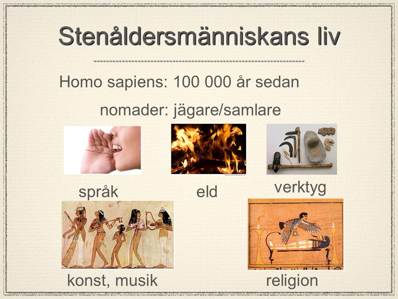 Stenåldersmänniskans liv Homo sapiens: 100 000 år sedan nomader: jägare/samlare språkeld verktyg konst, musikreligion