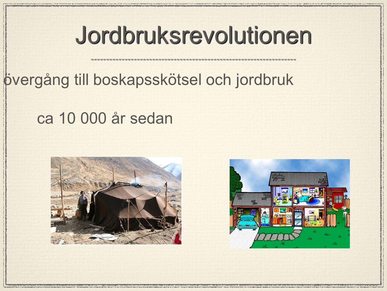 JordbruksrevolutionenJordbruksrevolutionen övergång till boskapsskötsel och jordbruk ca 10 000 år sedan