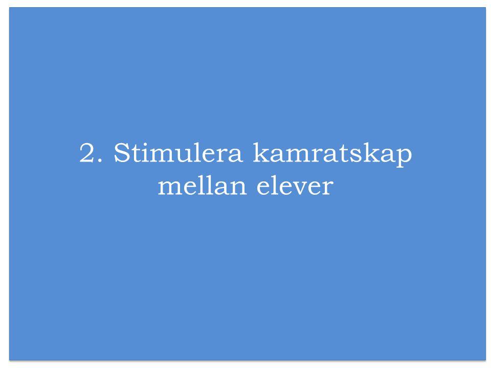 2. Stimulera kamratskap mellan elever