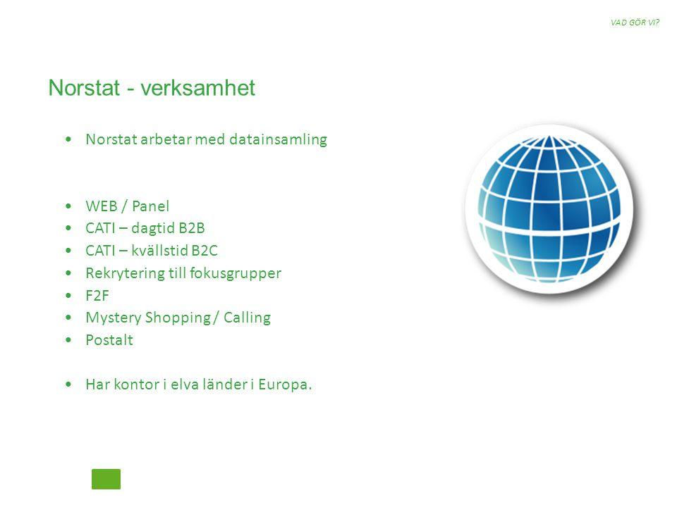 ANYTHING YOU NEED TO KNOW 04 Henrik Kronberg, Norstat Sverige AB Statistiker Arbetat sedan 2002 på Norstat Lagt grundstenarna till panel.se Projektledare kvant Metod Ansvarig för panel.se