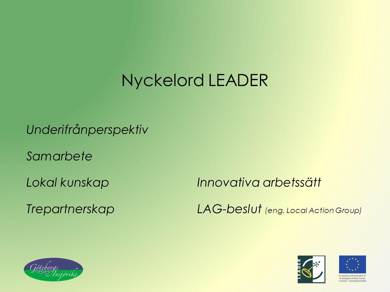Nyckelord LEADER Underifrånperspektiv Samarbete Lokal kunskap Trepartnerskap Innovativa arbetssätt LAG-beslut (eng. Local Action Group))