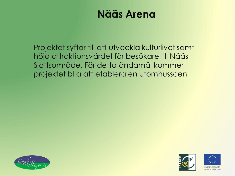 Nääs Arena Projektet syftar till att utveckla kulturlivet samt höja attraktionsvärdet för besökare till Nääs Slottsområde. För detta ändamål kommer pr