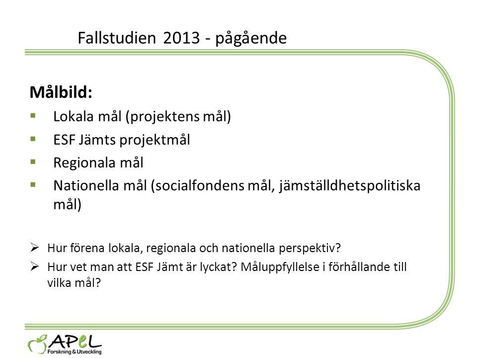 Fallstudien 2013 - pågående Målbild:  Lokala mål (projektens mål)  ESF Jämts projektmål  Regionala mål  Nationella mål (socialfondens mål, jämstäl