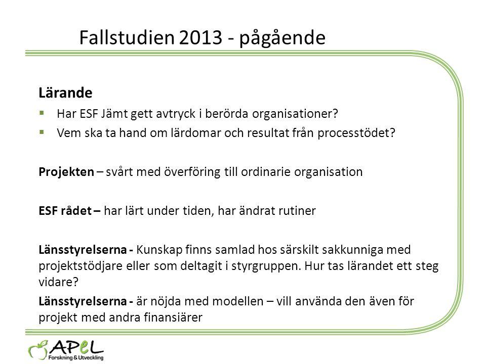 Fallstudien 2013 - pågående Lärande  Har ESF Jämt gett avtryck i berörda organisationer?  Vem ska ta hand om lärdomar och resultat från processtödet