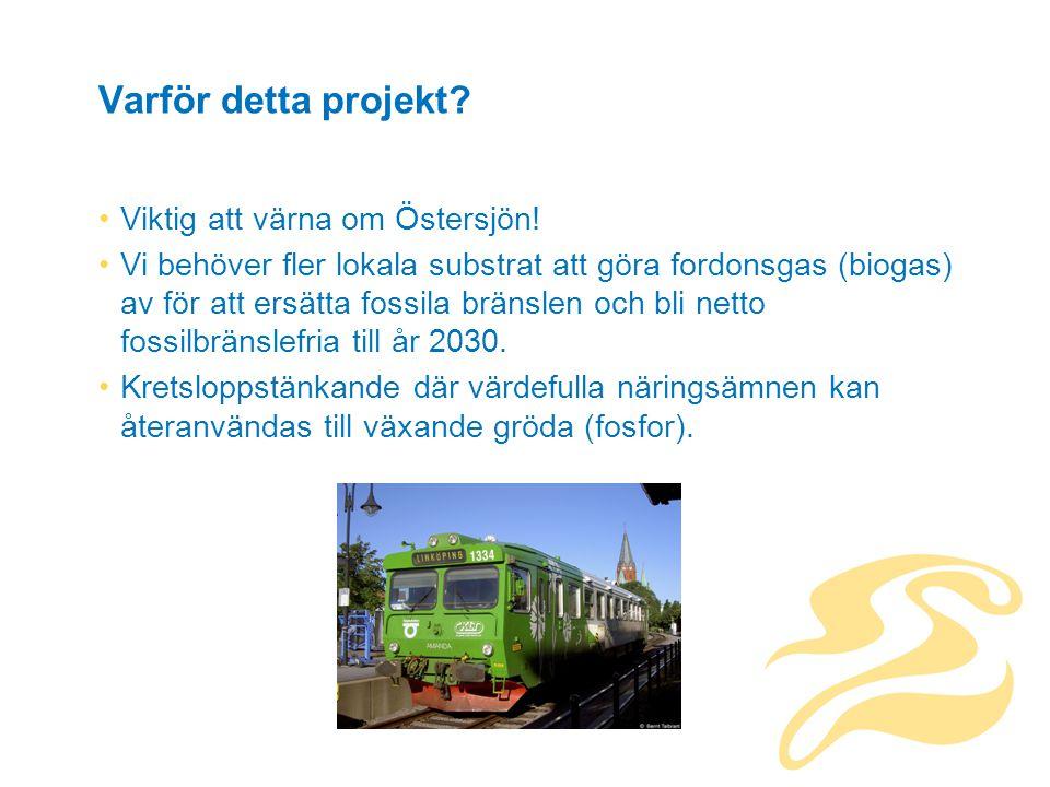 Varför detta projekt. Viktig att värna om Östersjön.