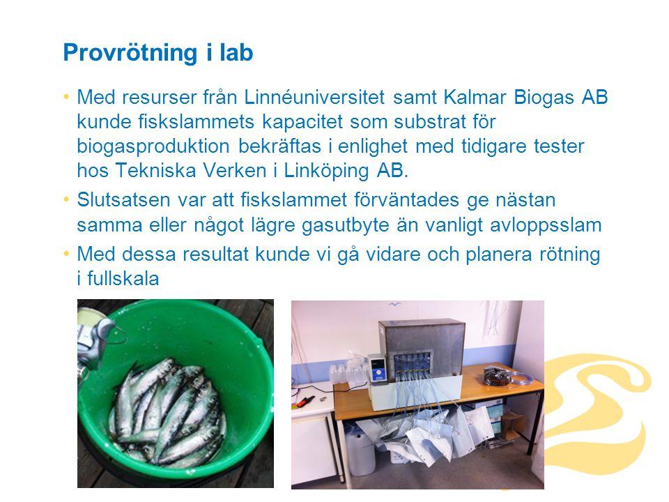 Provrötning i lab Med resurser från Linnéuniversitet samt Kalmar Biogas AB kunde fiskslammets kapacitet som substrat för biogasproduktion bekräftas i enlighet med tidigare tester hos Tekniska Verken i Linköping AB.