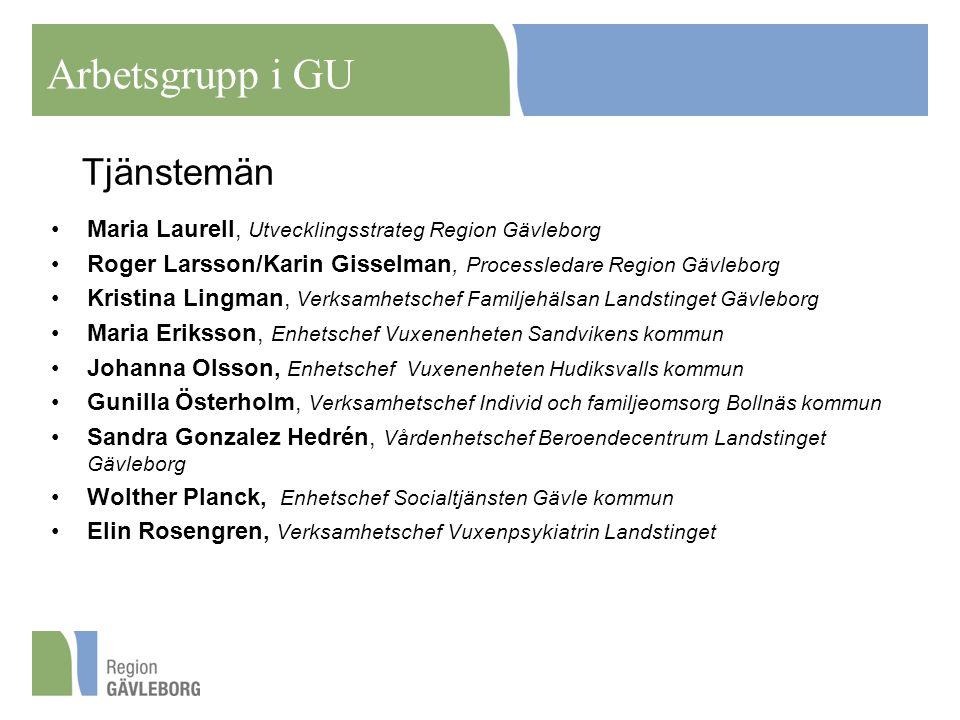 Tjänstemän Maria Laurell, Utvecklingsstrateg Region Gävleborg Roger Larsson/Karin Gisselman, Processledare Region Gävleborg Kristina Lingman, Verksamh