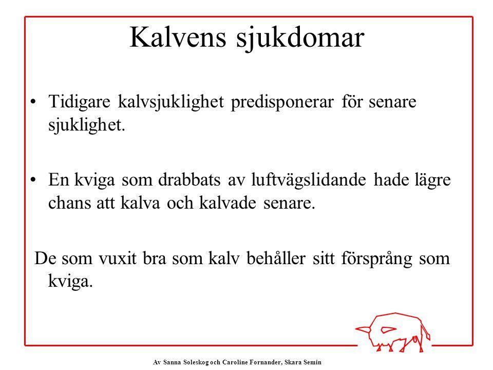 Av Sanna Soleskog och Caroline Fornander, Skara Semin Kalvens sjukdomar Tidigare kalvsjuklighet predisponerar för senare sjuklighet.