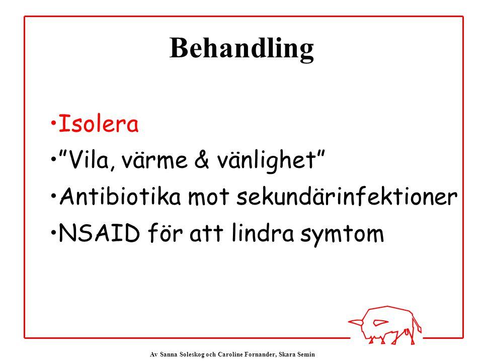 Av Sanna Soleskog och Caroline Fornander, Skara Semin Behandling Isolera Vila, värme & vänlighet Antibiotika mot sekundärinfektioner NSAID för att lindra symtom