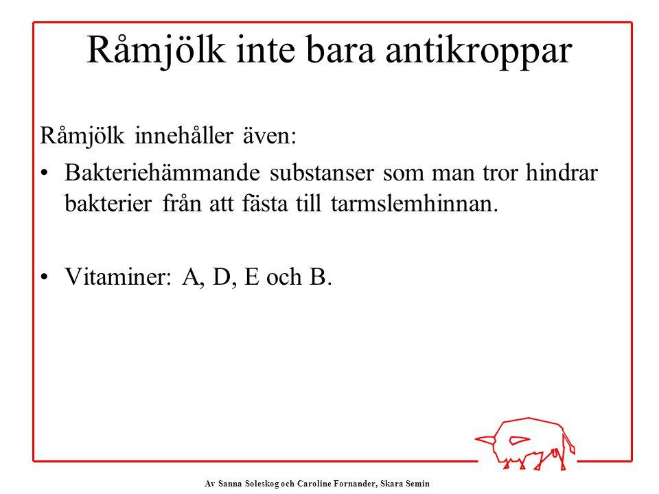 Av Sanna Soleskog och Caroline Fornander, Skara Semin Råmjölk inte bara antikroppar Råmjölk innehåller även: Bakteriehämmande substanser som man tror hindrar bakterier från att fästa till tarmslemhinnan.