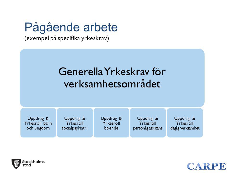 Pågående arbete (exempel på specifika yrkeskrav) Generella Yrkeskrav för verksamhetsområdet Uppdrag & Yrkesroll daglig verksamhet Uppdrag & Yrkesroll