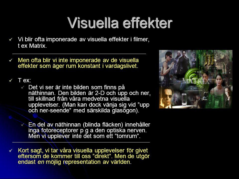 Perceptuell heuristik De gestaltpsykologiska principerna är heuristiska verktyg, en form av tumregler.