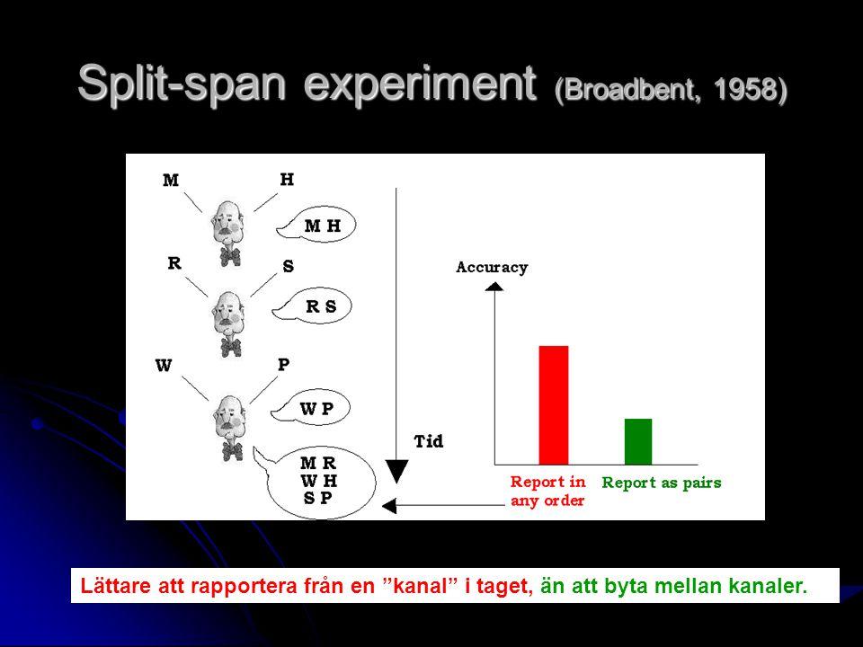 Split-span experiment (Broadbent, 1958) Lättare att rapportera från en kanal i taget, än att byta mellan kanaler.