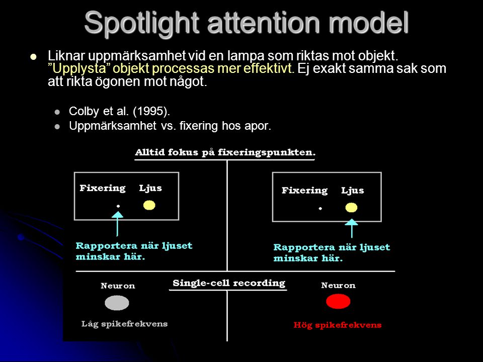 Spotlight attention model Liknar uppmärksamhet vid en lampa som riktas mot objekt.