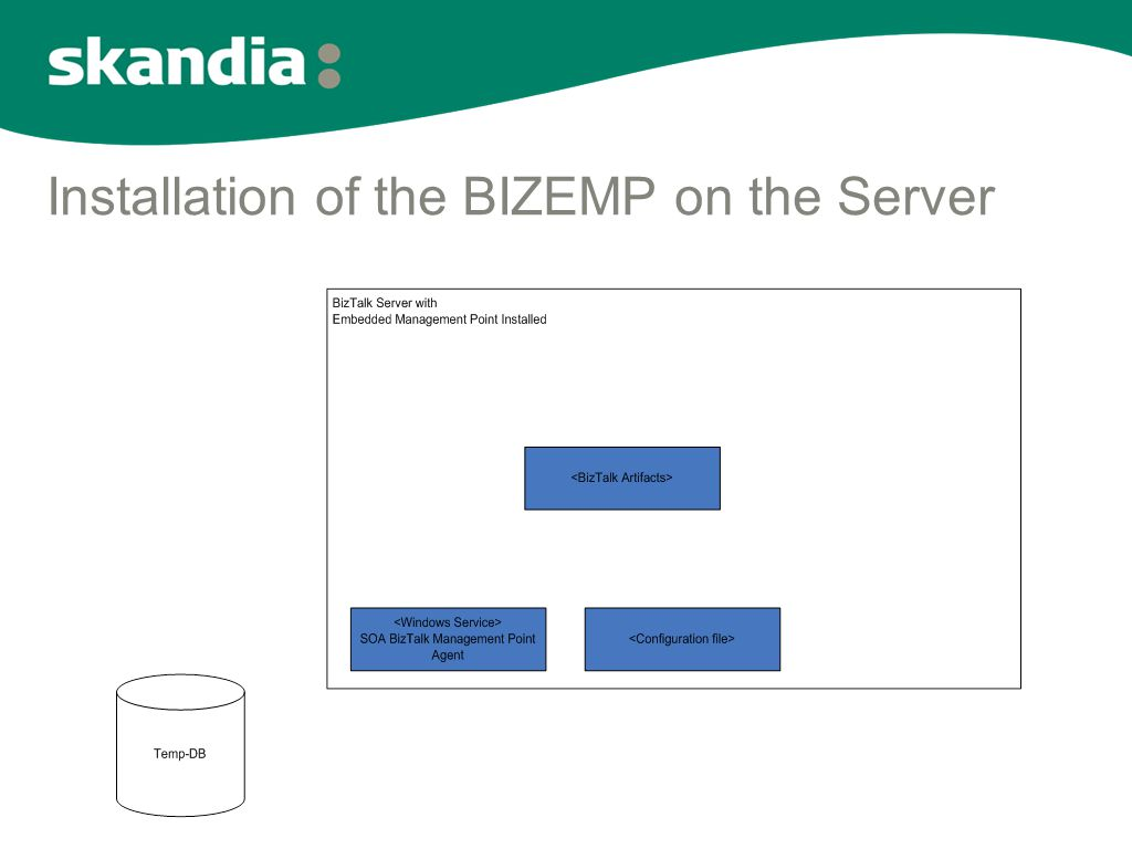 Installation of the BIZEMP on the Server