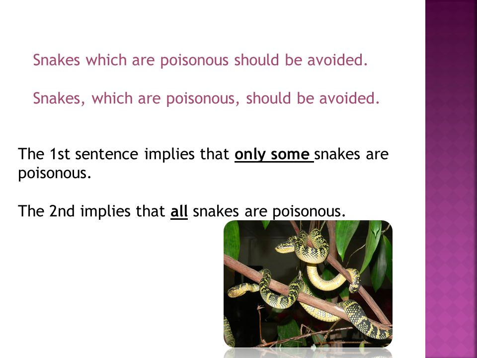 Snakes which are poisonous should be avoided. Snakes, which are poisonous, should be avoided.