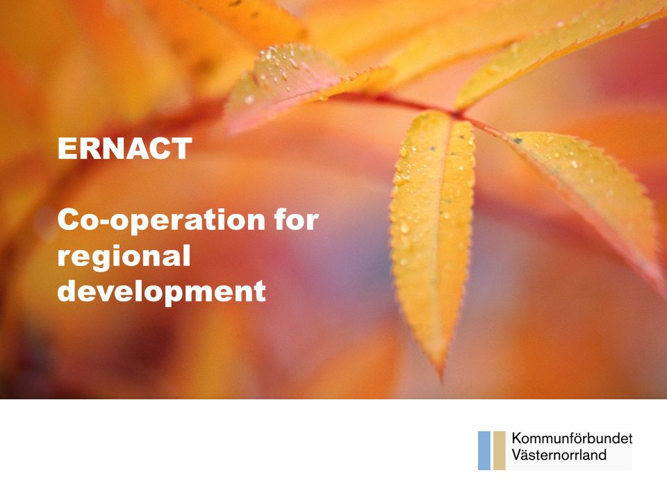 Våra framsteg Halvårsrapport 2012 ERNACT Co-operation for regional development